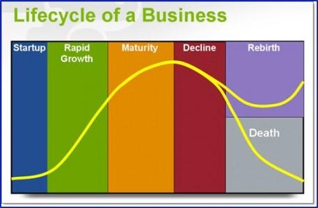 Company Life Cycle