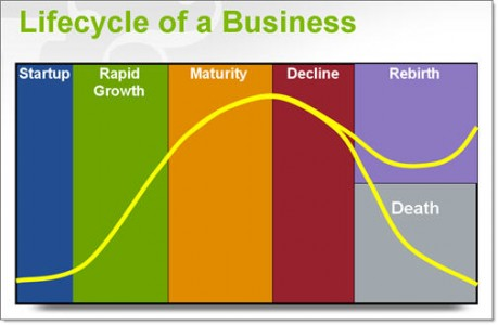 lifecycle of a company